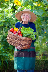 senior woman holding basket of vegetables